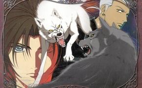 Картинка взгляд, волки, Wolfs Rain, парни