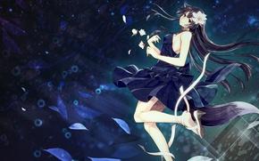 Обои цветы, лента, арт, аниме, toudou charo, лепестки, девушка, ушки