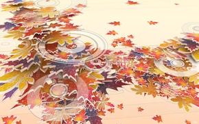 Обои осень, круги, Листья