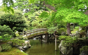 Картинка nature, park, tree