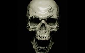 Картинка vampire, skull, bones, teeth