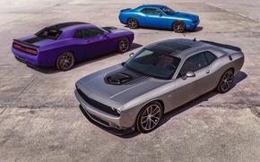 Картинка Dodge, Challenger, Muscle Car