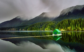 Картинка лес, горы, природа, озеро, British Columbia, Capilano Lake, North Vancouver