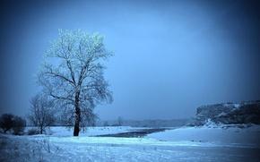 Картинка иней, поле, снег, дерево, Зима, горка