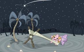 Картинка пляж, звезды, ночь, пальмы, ситуации, ракушки, запуск, situations, рогатка