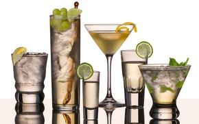 Картинка бокал, фрукты, martini
