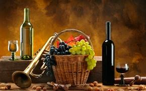 Обои орехи, труба, белое, виноград, корзина, вино, красное