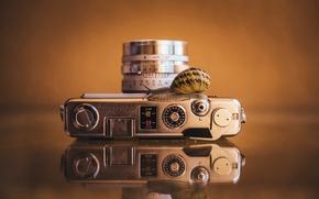 Картинка макро, фон, улитка, камера