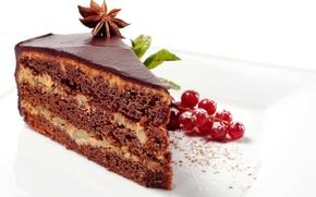 Обои шоколад, торт, пирожное, cake, десерт, смородина, выпечка, сладкое, chocolate, глазурь, dessert, кусочек, glaze, анис