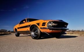 Картинка Mustang, Ford, 1970, 1 428, Mach