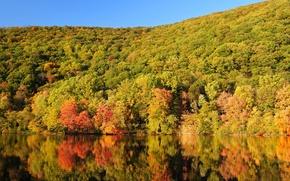 Картинка осень, лес, небо, деревья, горы, озеро, склон
