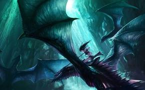 Обои драконы, полет, крылья, девушка, водопад, эльфийка