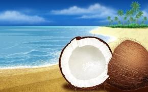 Обои море, кокос, песок