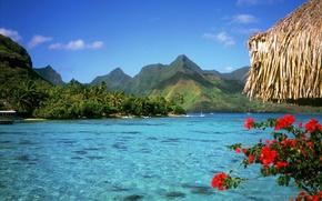 Картинка острова, Багамы, Путешествия