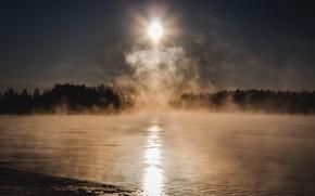 Картинка холод, лес, солнце, туман, озеро