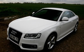 Обои белая, Coupe, quattro, Audi A5, Ауди