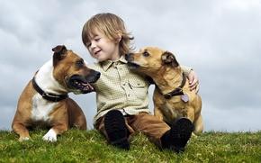 Картинка лето, настроение, собака, мальчик, ребёнок