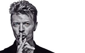 Картинка music, rock, classic, art rock, David Bowie, Дэвид Боуи