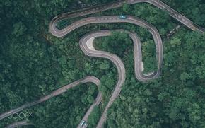 Картинка дорога, машина, лес, вид сверху