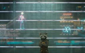 Картинка marvel, марвел, Guardian of the galaxy, стражи галактики, rocket raccoon, реактивный енот