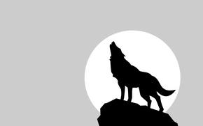Картинка луна, волк, тень, минимализм, moon, wolf