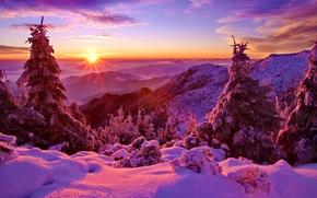 Обои небо, закат, зима, горы, лес, деревья