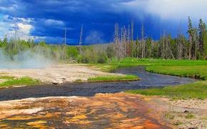 Картинка лес, небо, деревья, тучи, река, США, гейзер, Йеллоустоунский национальный парк