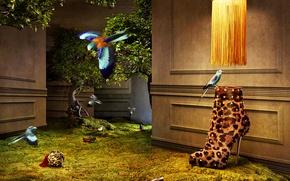 Картинка птицы, дерево, стены, гламур, Обувь