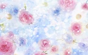Картинка цветы, розовый, голубой, нежность, розы, ромашки, красота