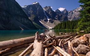 Картинка лес, деревья, пейзаж, горы, природа, река, Канада