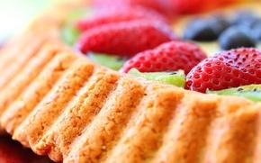Картинка торт, киви, food, cake, десерт, dessert, сладкое, черника, ягоды, strawberries, berries, kiwi, tart, пирог, клубника, ...