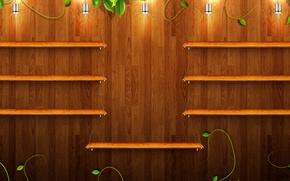 Картинка зелень, лампы, дерево, текстура, полки