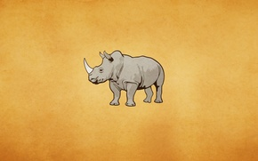 Обои носорог, rhinoceros, светлый фон, rhino