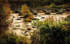 Картинка лес, деревья, мост, река, камни, мох, Норвегия, фонари, кусты, Egersund