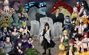 Обои Wendy, sugoi, demon slayer, strong, witch, Seilah, Tartaros, shounen, Erza Scarlet, Fairy Tail, armor, Acnologia, ...
