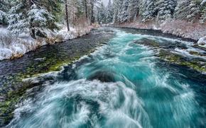 Картинка река, лес, снег, деревья, поток