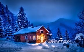 Картинка зима, небо, облака, снег, деревья, пейзаж, природа