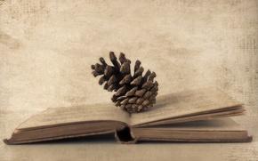 Обои стиль, фон, книга, шишка