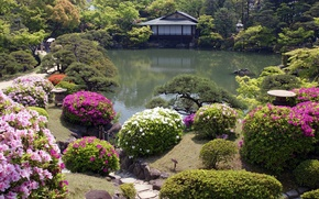 Картинка цветы, домик, японский сад