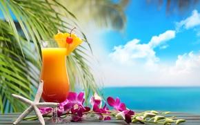 Обои море, пляж, коктейль, summer, фрукты, beach, fresh, sea, fruit, paradise, drink, cocktail, tropical