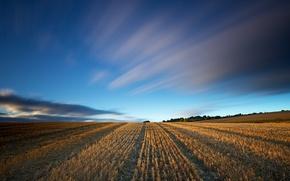 Картинка поле, небо, пейзаж