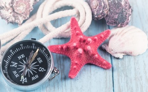 Картинка дерево, ракушки, морская звезда, компас, marine, starfish, seashells