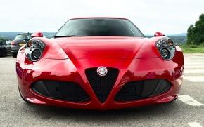 Обои красный, Alfa Romeo, передок