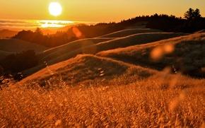 Картинка солнце, закат, блики, океан, холмы, california, травы, калифорния
