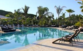 Картинка пальмы, бассейн, курорт