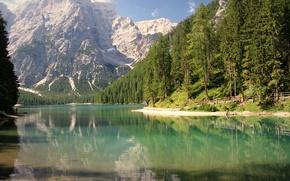 Картинка лес, деревья, горы, озеро, отражение, берег, лодки, Альпы