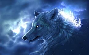 Картинка фото, волк, Хищник