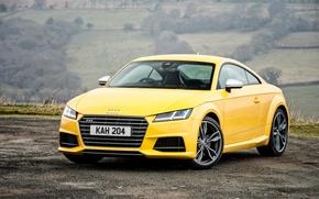 Картинка Audi, ауди, купе, Coupe, UK-spec, 2015, TTS