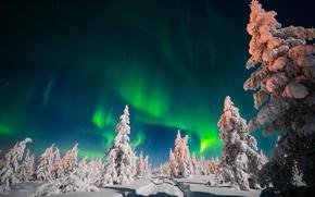 Картинка зима, дорога, небо, снег, деревья, ночь, звёзды, северное сияние