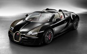 Обои bugatti veyron, black bess, w16